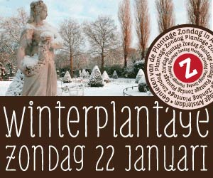 WinterplantageAmsterdam